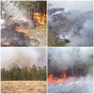 Fuego en Valle Nuevo 4 27 07 2014