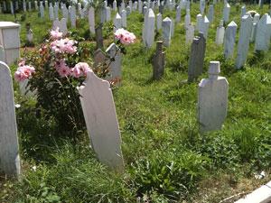 Muchas víctimas de las desapariciones forzosas permanecen enterradas en tumbas anónimas. Foto: Oficina del Alto Comisionado de las Naciones Unidas para los Derechos Humanos.